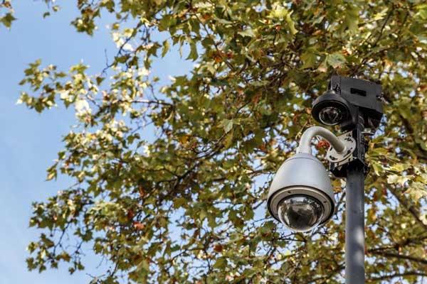 دوربین مدار بسته در باغ